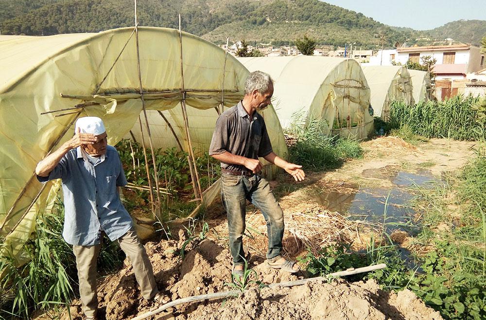 Photo of Des récoltes agricoles noyées par les eaux usées: La Seaal mise en cause  (vidéo)